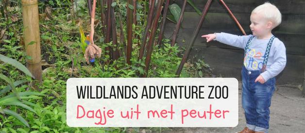 Wildlands met kleine kinderen